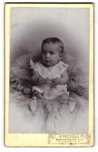 Fotografie P. Petzold, Brandenburg a/H, Säugling in Kleidchen