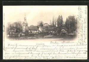 AK Hermance, Ortspartie mit Kirche