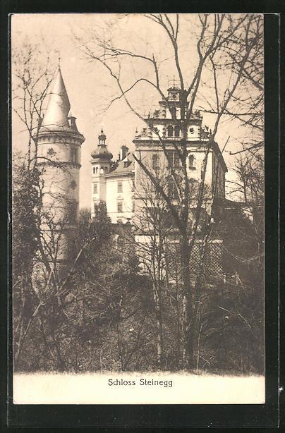 AK Steinegg, Blick zum Schloss Steinegg