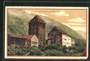 AK Maienfeld, Schloss Brandis, Teilansicht
