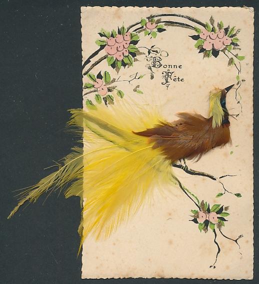 Echtfeder-AK bunter Vogel sitzt auf einem Ast mit Blumen und Goldverzierungen