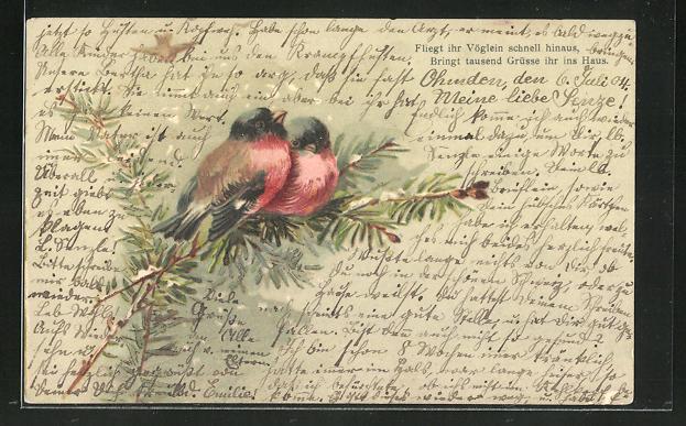 AK Vögel sitzen auf einem Ast im Winter, Grusskarte