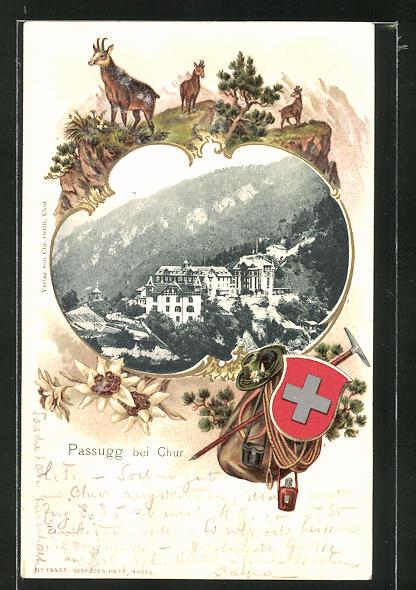 Passepartout-Lithographie Passugg, Totalansicht, Schweizer Landschaft mit Wappen