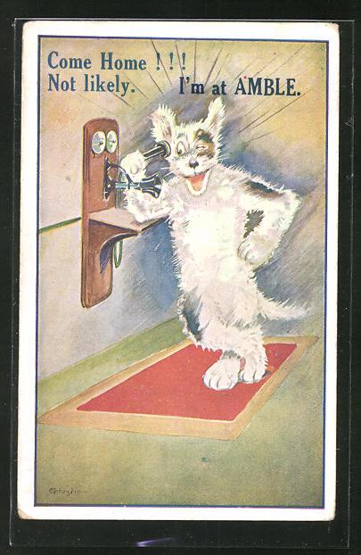 AK Come home! - Not likely, I'm at AMBLE, Hund am Telefon, Scherz