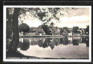 AK Grevesmühlen i. Meckl., Vielbecker Teich