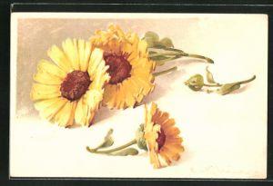 Künstler-AK Catharina Klein: gekürzte gelbe Blumen mit Knospe