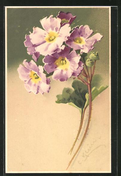 Künstler-AK Catharina Klein: zwei Stengel mit lila Blüten