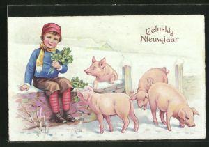 AK Neujahr, Junge mit Klee und vier Schweinen