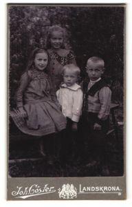 Fotografie Joh. Göster, Landskrona, Portrait mit zwei Mädchen und zwei kleinen Knaben