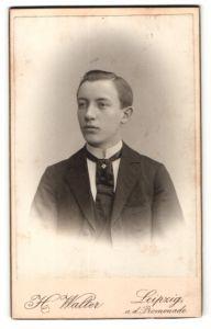 Fotografie H. Walter, Leipzig, Portrait Junger Mann mit breiter Krawatte