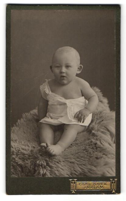 Fotografie Carl Bock, Anklam, Baby auf Felldecke sitzend