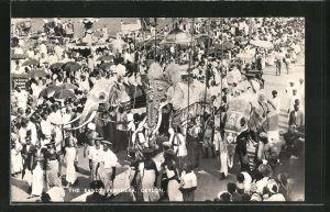 AK Ceylon, The Kandy Perahera, geschmückte Elefanten