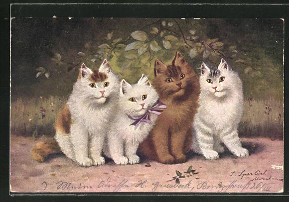 Künstler-AK Süsse Katzen, eine mit violetter Schleife um den Hals
