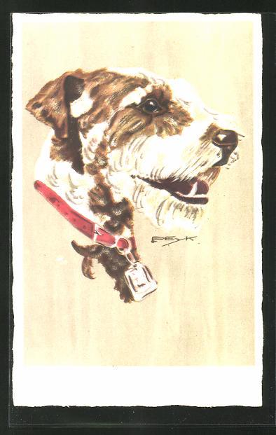 Künstler-AK Hilla Peyk: Lebhafter Foxterrier mit Halsband