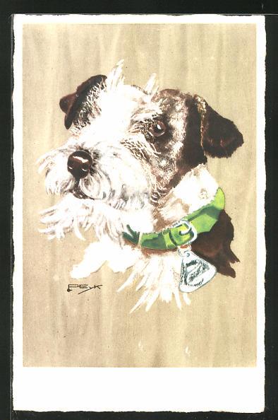 Künstler-AK Hilla Peyk: Weiss-braun gescheckter Terrier mit grünem Halsband