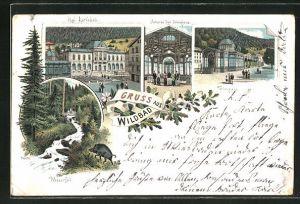Lithographie Wildbad, Kgl. Karlsbad, Inneres der Trinkhalle, Partie vor der Trinkhalle, Wasserfall
