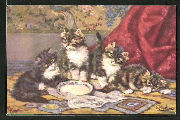 AK drei Katzen mit Schale auf einem Teppich