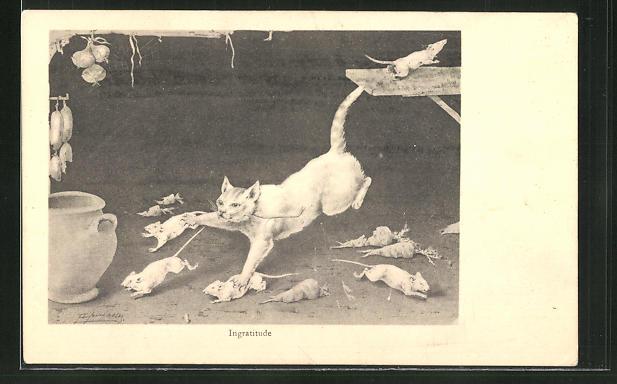 AK Ingratude, Katze jagd Ratten 0