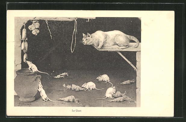 AK Le Guet, Katze beobachtet Ratten 0