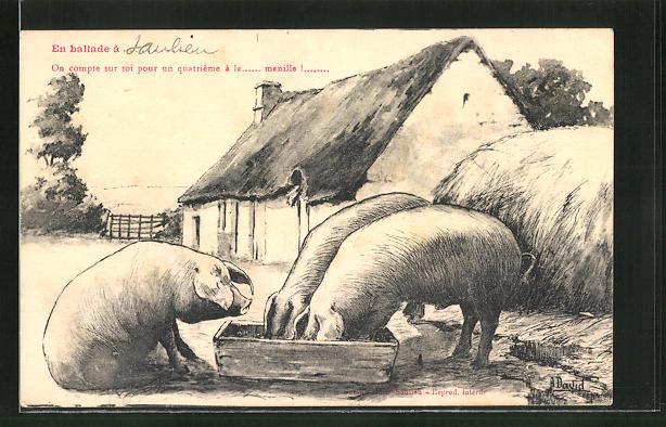 AK Schweine am Futtertrog 0