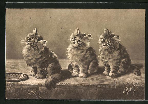 AK drei Kätzchen, Schale 0