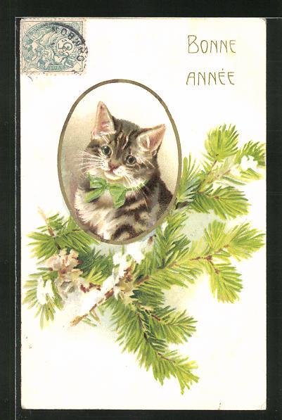AK Neujahrsgruss mit getigerter Katze 0