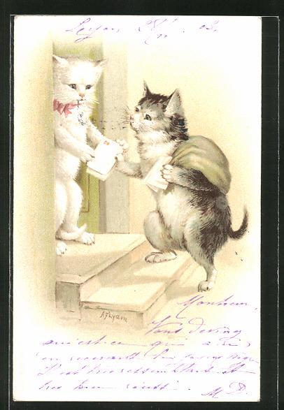 AK Katzen-Briefträger bringt die Post, vermenschlichte Tiere 0