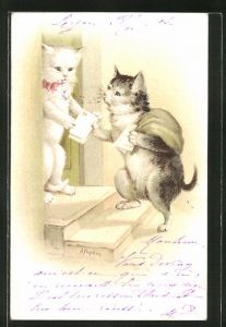 AK Katzen-Briefträger bringt die Post, vermenschlichte Tiere