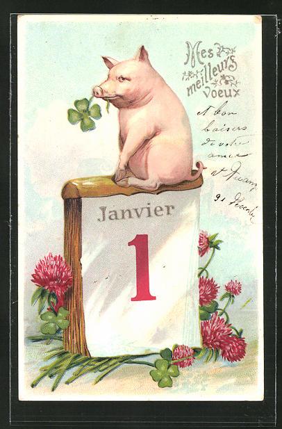 AK Neujahrsgruss, Schwein sitzt auf einem Kalender 0