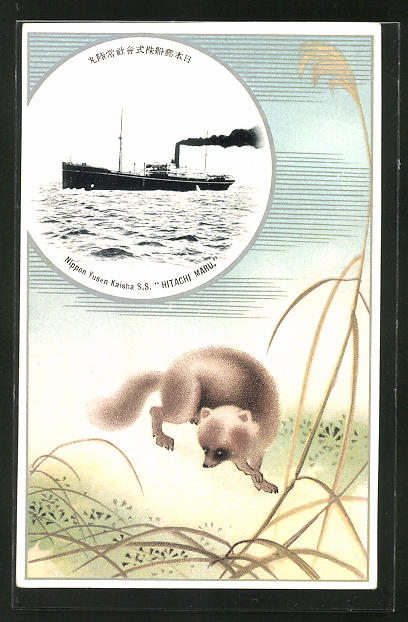 Künstler-AK Passagierschiff