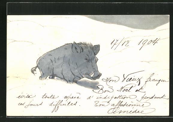 AK Wildschwein stapft durch den Schnee