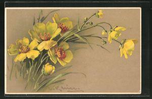 Künstler-AK Catharina Klein: gelbe Blumen im hohen Gras