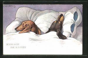 Künstler-AK Fritz Quidenus: Mariage de Raison, schlafende Dackel in einem Bett