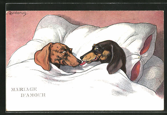 Künstler-AK Fritz Quidenus: Mariage d'Amour, Dackel-Liebespaar liegt im Bett