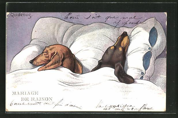 Künstler-AK Fritz Quidenus: Mariage de Raison, schlafendes Dackel-Paar