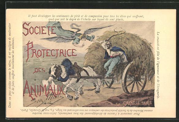 AK Societe Protectrice des Animaux, Tierschutz, Bauer schindet sein Pferd