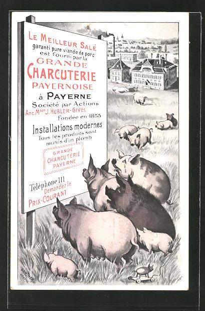 Künstler-AK Payerne, Grande Charcuterie Payernoise J. Hubler-Givel