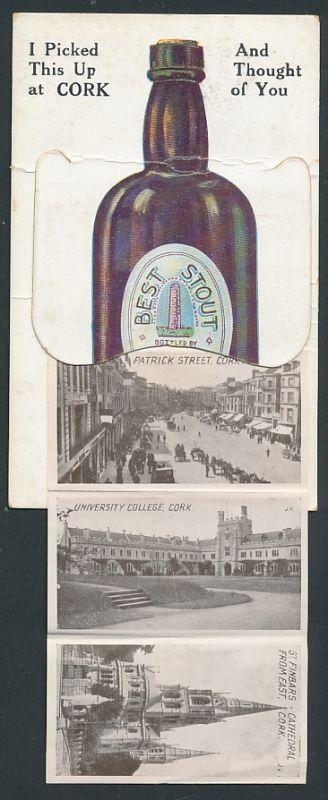 Leporello-AK Cork,