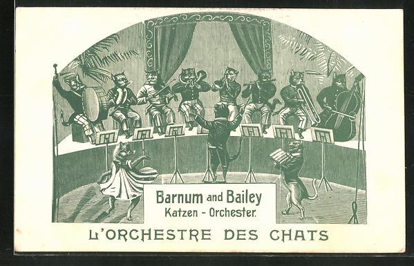AK Zirkus Barnum & Bailey Katzen-Orchester