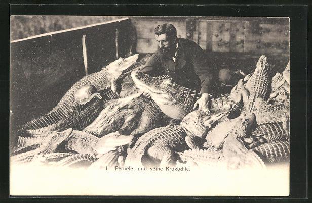 AK Zirkus-Dompteur Pernelet und seine Krokodile