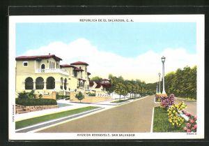 AK San Salvador, Avenida Roosevelt