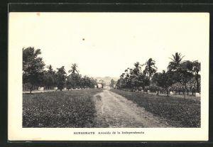 AK Sonsonate, Avenida de la Independencia