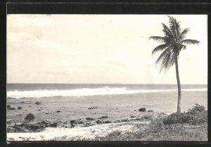 AK Maurice, View of Pointe aux Piments