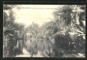 AK Maurice, Pamplemousses, Lac du Grand Kiosque, Jardin Botanique