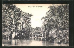 AK Maurice, Paysage, Flusspartie mit Palmen