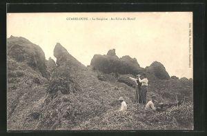 AK Guadeloupe, La Soupiere: Au Faite du Massif