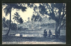 AK Guadeloupe, Pointe-A-Pitre, Un coin du Jardin botanique