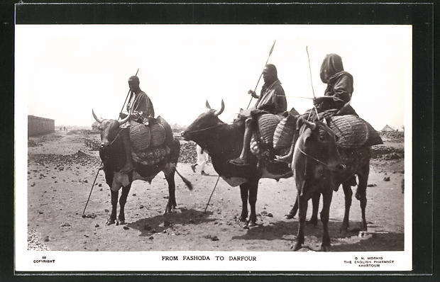 AK Sudan, From Fashoda to Darfour, Eingeborene reiten auf Rindern