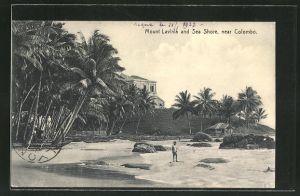 AK Mount Lavinia, Sea Shore mit Palmen