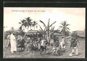 AK Anecho, Missionszöglinge bei der Arbeit
